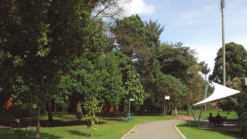 AsoAlamos, Miembro Honorario del Jardín Botánico José ...